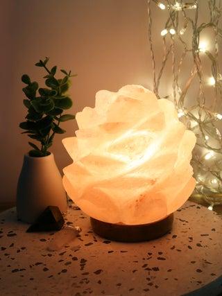 Salt Lamp Succulent Shape